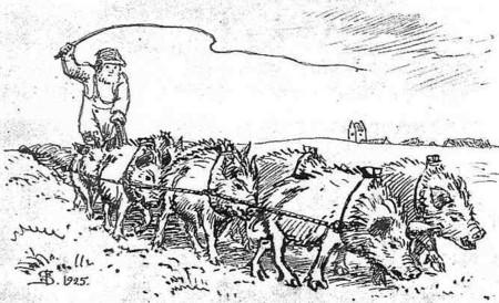 Over het varkenshuis